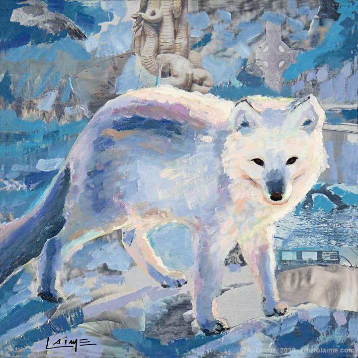 Arctic fox by Arturo Laime