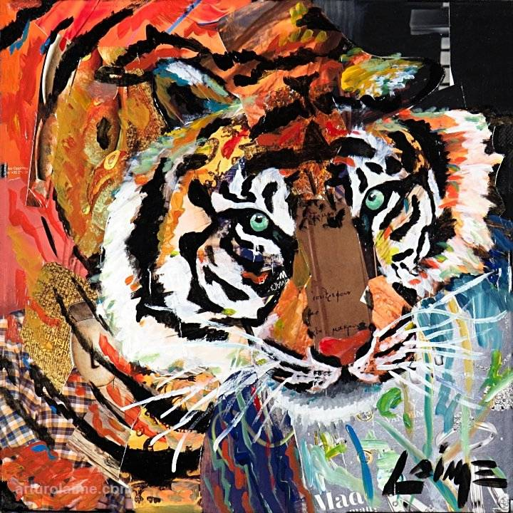 Tiger by Arturo Laime