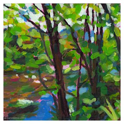 river bank in weisenbach fine art print