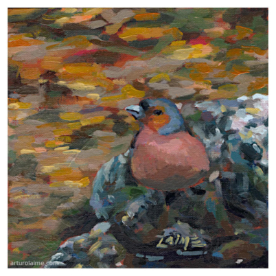 Robin in stream oil painting on panel