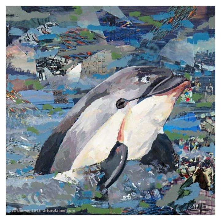 Vaquita dolphin mixed media artwork